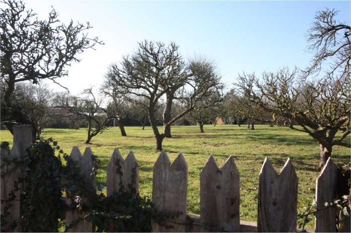 Photograph of Flintham Village